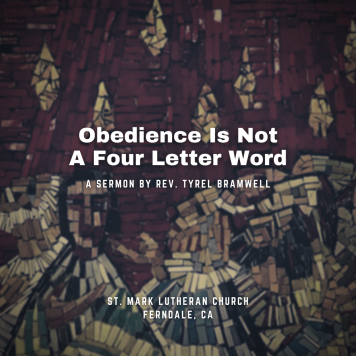Obedience. Not A Dirty Word