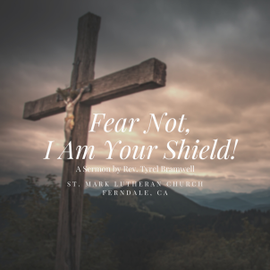 Fear Not! I Am Your Shield